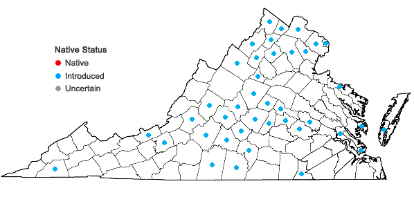 Locations ofArtemisia annua L. in Virginia