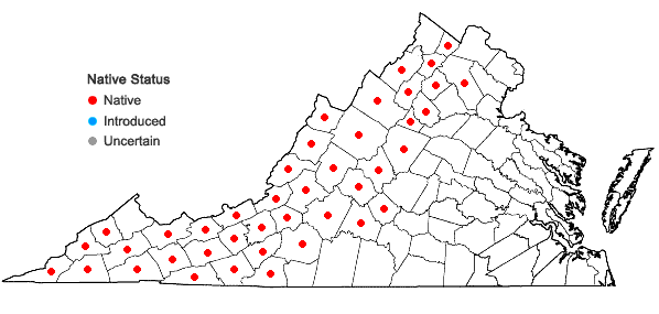 Locations ofAsclepias exaltata L. in Virginia
