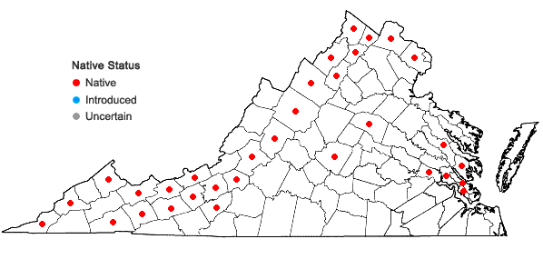 Locations ofAsclepias incarnata L. var. incarnata in Virginia