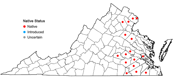 Locations ofAsclepias rubra L. in Virginia