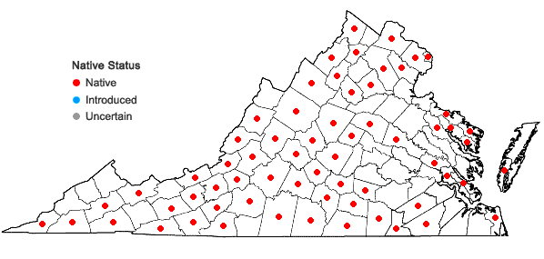 Locations ofAsclepias verticillata L. in Virginia