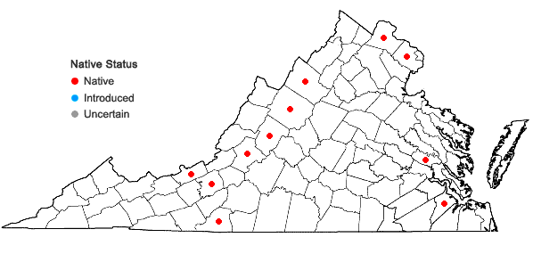 Locations ofAsplenium ×ebenoides R.R. Scott in Virginia