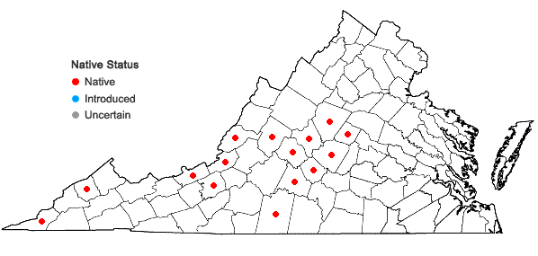 Locations ofAsplenium ×trudellii Wherry in Virginia