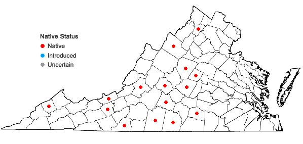 Locations ofAsplenium bradleyi D.C. Eaton in Virginia