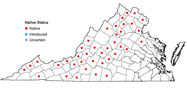 Locations ofAsplenium pinnatifidum Nuttall in Virginia