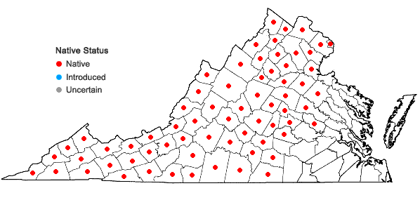 Locations ofAsplenium trichomanes L. in Virginia