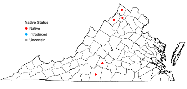 Locations ofAstragalus distortus T. & G. var. distortus in Virginia