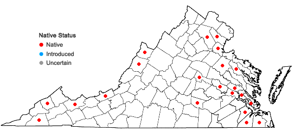 Locations ofAtrichum crispum (James) Sull. in Virginia