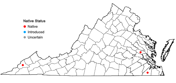 Locations ofAtrichum cylindricum (F. Weber) G.L. Sm. in Virginia