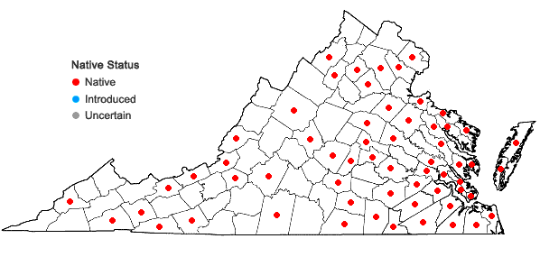 Locations ofAulacomnium palustre (Hedw.) Schwägr. in Virginia