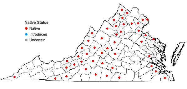 Locations ofAvenella flexuosa (Linnaeus) Drejer in Virginia