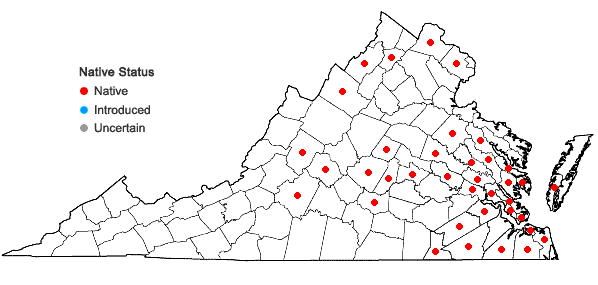 Locations ofAzolla caroliniana Willd. in Virginia