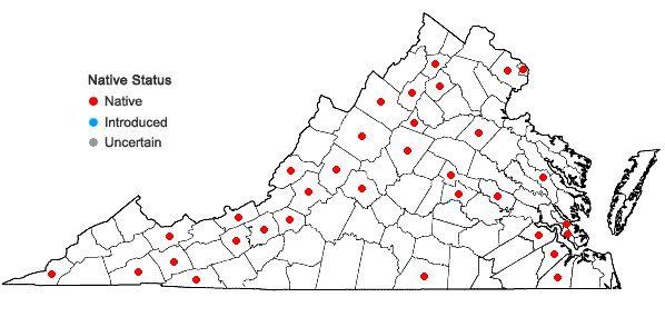 Locations ofBarbula unguiculata Hedwig in Virginia