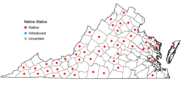 Locations ofBazzania trilobata (L.) Gray in Virginia