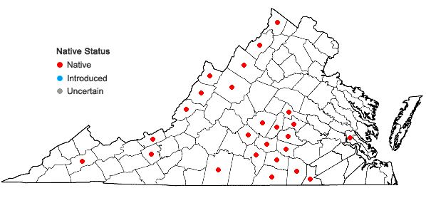 Locations ofBlephilia ciliata (L.) Benth. in Virginia