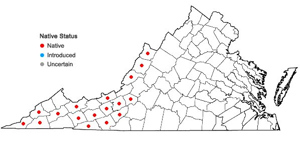 Locations ofBlephilia hirsuta (Pursh) Benth. in Virginia
