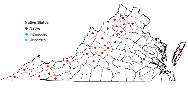 Locations ofBotrychium matricariifolium (Doll) A. Braun ex Koch in Virginia