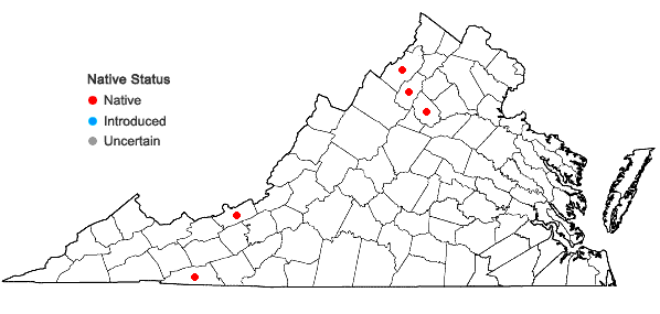 Locations ofBotrychium simplex E. Hitchc. var. simplex in Virginia