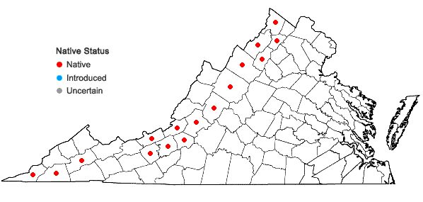 Locations ofBouteloua curtipendula (Michx.) Torr. var. curtipendula in Virginia
