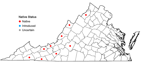 Locations ofBrachyelytrum aristosum (Michx.) Trel. in Banner & Coville in Virginia