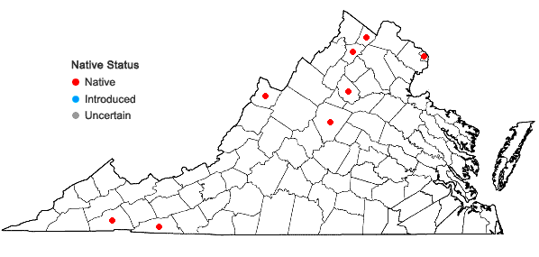 Locations ofBromus ciliatus L. in Virginia