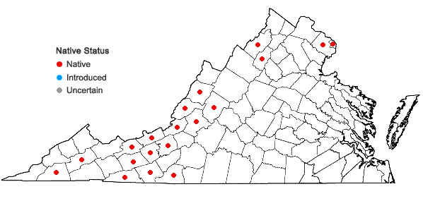 Locations ofBromus latiglumis (Shear) A.S. Hitchc. in Virginia