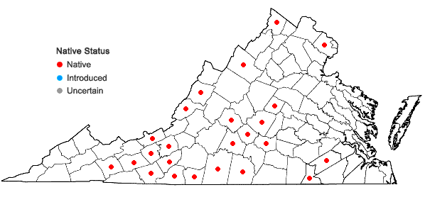 Locations ofBromus nottowayanus Fern. in Virginia