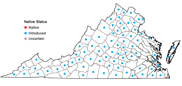 Locations ofBromus tectorum L. in Virginia