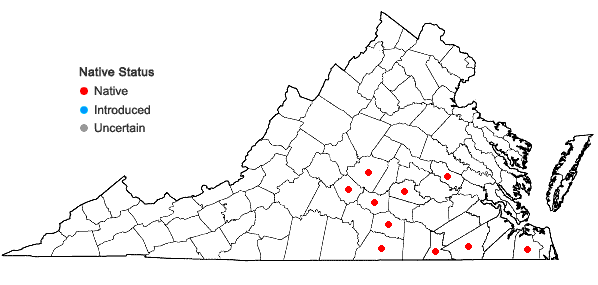Locations ofBruchia flexuosa (Schwägr.) Müll. Hal in Virginia
