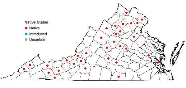 Locations ofBryhnia novae-angliae (Sull. & Lesq.) Grout in Virginia