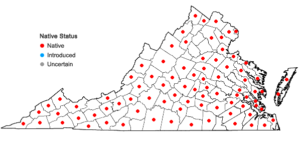 Locations ofBryoandersonia illecebra (Hedw.) H. Rob. in Virginia