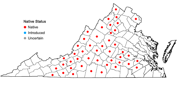 Locations ofBryodesma rupestre (L.) J. Sojak in Virginia