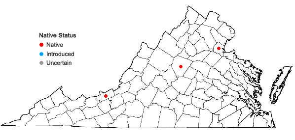 Locations ofBucklandiella sudetica (Funck) Bednarek-Ochyra & Ochyra in Virginia