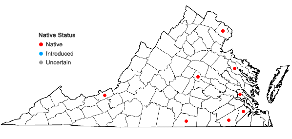 Locations ofBuxbaumia aphylla Hedwig in Virginia