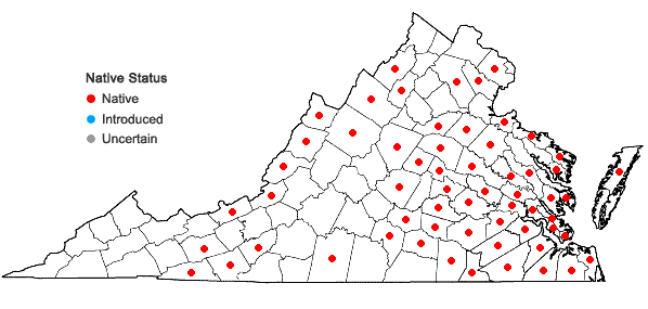 Locations ofCalamagrostis coarctata (Torrey) Eaton in Virginia