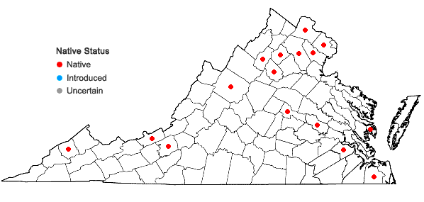 Locations ofCallicladium haldanianum (Grev.) H.A. Crum in Virginia