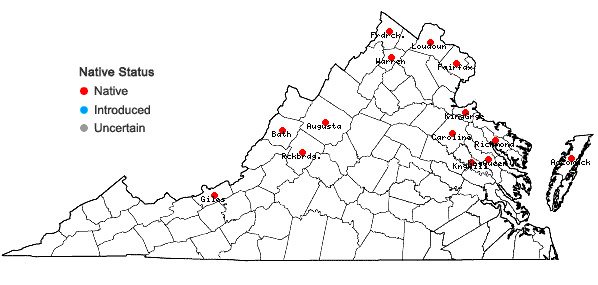 Locations ofCallitriche palustris L. in Virginia