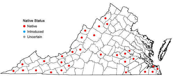 Locations ofCalopogon tuberosus (L.) BSP var. tuberosus in Virginia