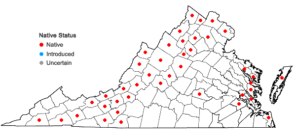 Locations ofCaltha palustris L. in Virginia