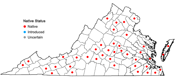Locations ofCalypogeia fissa (L.) Raddi in Virginia