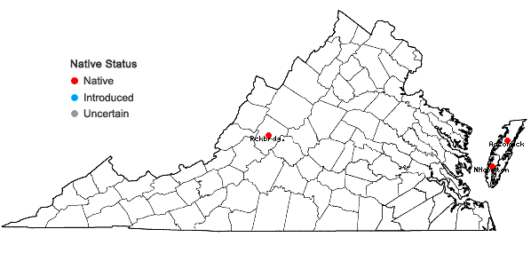 Locations ofCalypogeia peruviana Nees et Mont. in Virginia