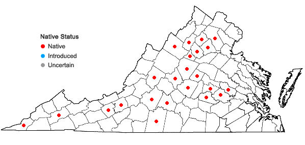 Locations ofCalystegia spithamaea (L.) Pursh ssp. spithamaea in Virginia
