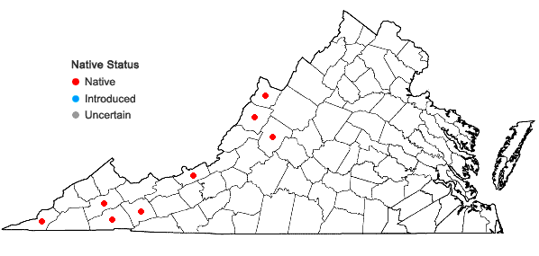Locations ofCamassia scilloides (Raf.) Cory in Virginia