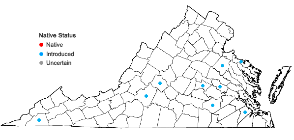 Locations ofCamelina sativa (Linnaeus) Crantz in Virginia