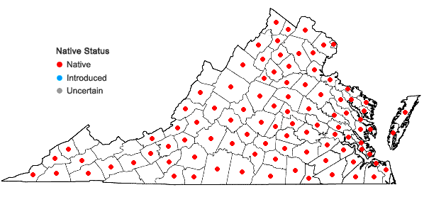 Locations ofCampsis radicans (L.) Seem. ex Bureau in Virginia