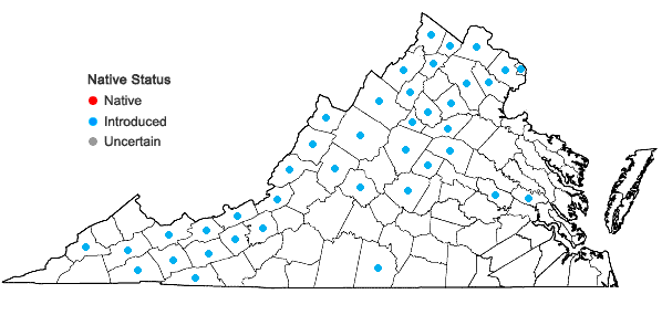Locations ofCarduus acanthoides L. ssp. acanthoides in Virginia