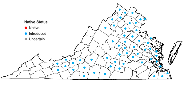 Locations ofCarduus nutans L. in Virginia