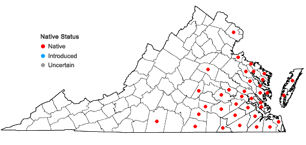 Locations ofCarex alata Torrey in Virginia