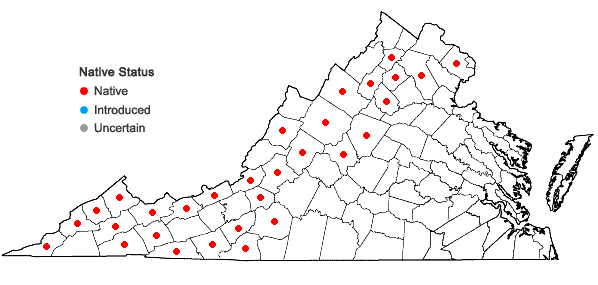 Locations ofCarex appalachica Webber & Ball in Virginia