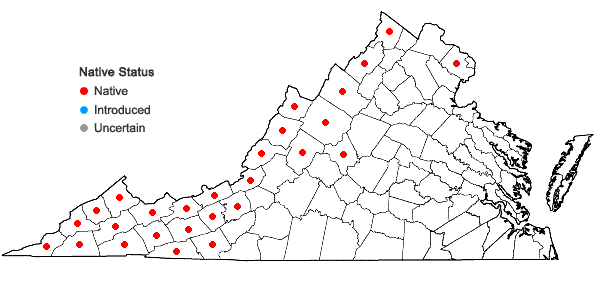 Locations ofCarex baileyi Britton in Virginia